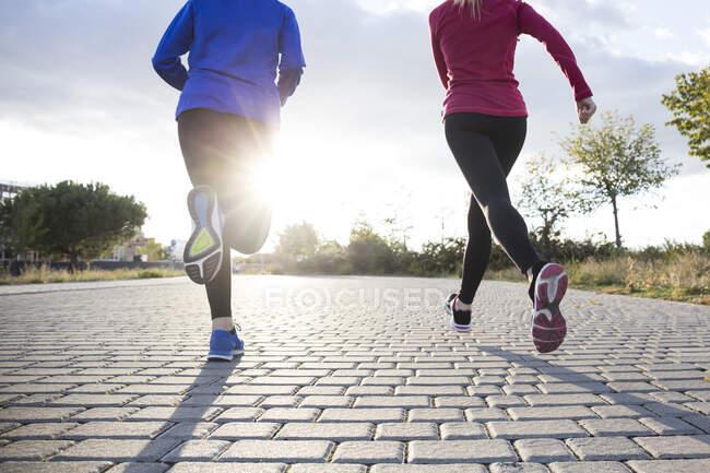 Жінки бігають разом у парку. — стокове фото
