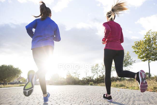Увага до жінок, що бігають разом у парку, проти ранкового сонця. — стокове фото