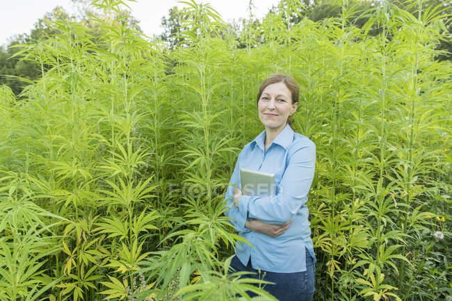 Portrait de femme souriante avec comprimé dans une plantation de chanvre — Photo de stock