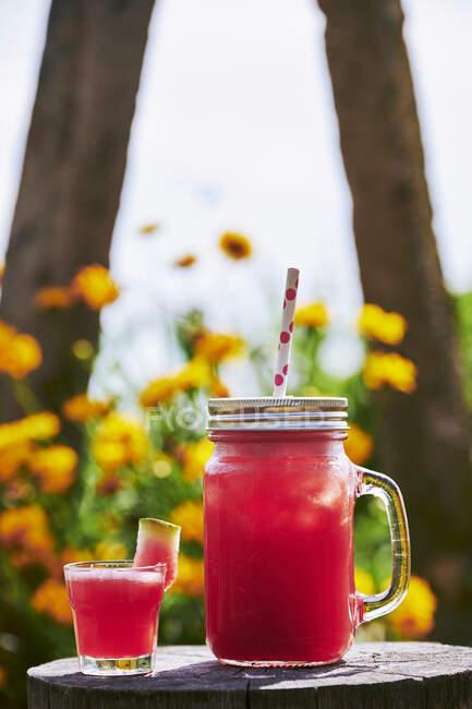 Зблизька свіжий коктейль з кавуном зі склом на стовбурі дерев у саду. — стокове фото