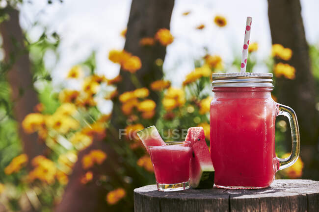 Зблизька свіжий коктейль з кавуном у скляній і картопляній посудині на дереві. — стокове фото