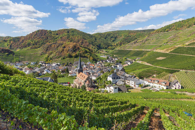 Germany, Rhineland-Palatinate, Ahr Valley, Red Wine Hiking Trail, Mayschoss — Stock Photo
