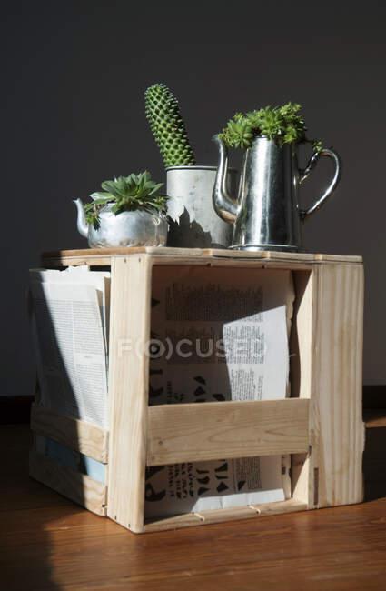 Taburete hecho de jaulas viejas de vino y manzana, suculentas en metal - foto de stock