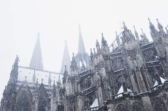Low angle view of Cologne Cathedral during snowfall in city against sky — Stock Photo