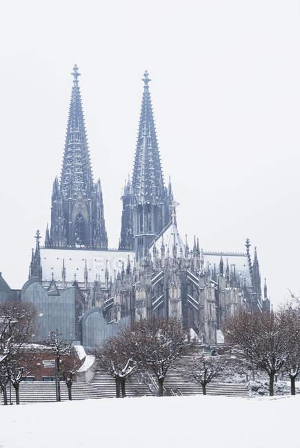Vista de bajo ángulo del Museo Ludwig y la Catedral de Colonia en la ciudad contra el cielo - foto de stock