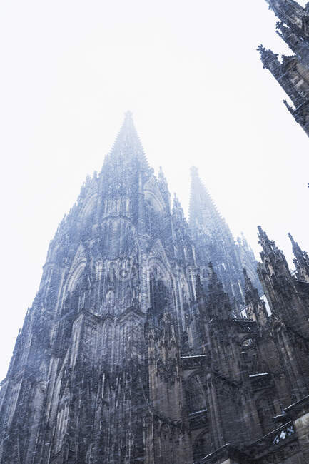 Low angle view of historic Cologne Cathedral in city during snowfall against sky — Stock Photo