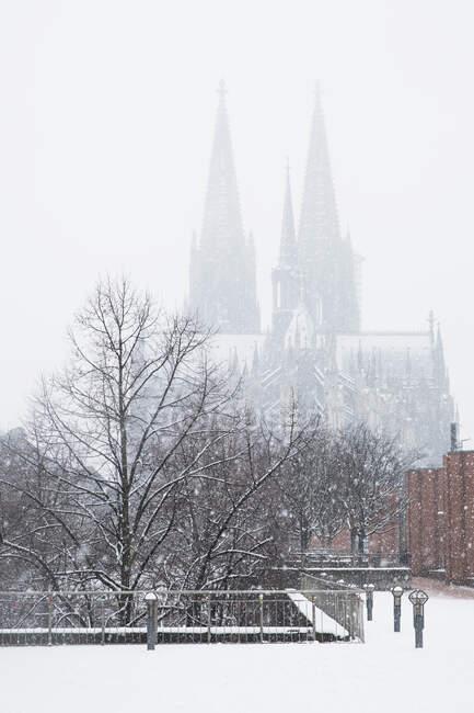 Árboles desnudos contra la catedral de Colonia durante las nevadas en la ciudad contra el cielo - foto de stock