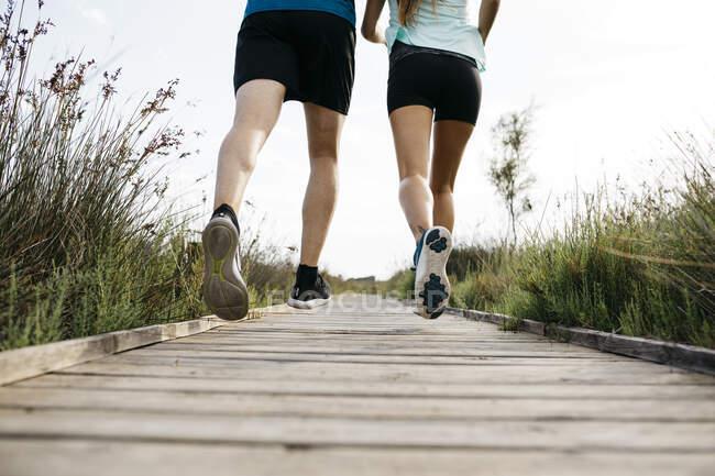 Visão traseira do jovem casal correndo na passarela de madeira — Fotografia de Stock