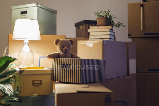 Teddy bear inside cardboard box in an empty room in a new home — Stock Photo