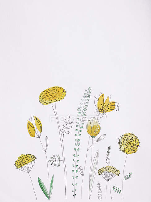 Yellow flowers watercolor painting on white background — Stock Photo