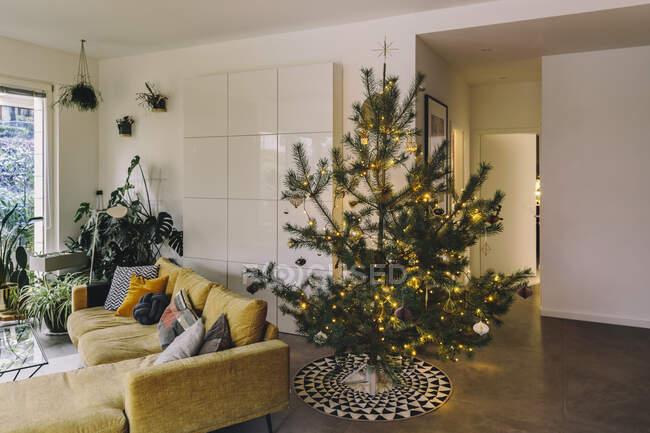 Украшенная елка в гостиной — стоковое фото