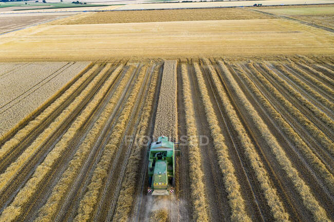 Aerial view of combine harvester on agricultural field during sunset — Stock Photo