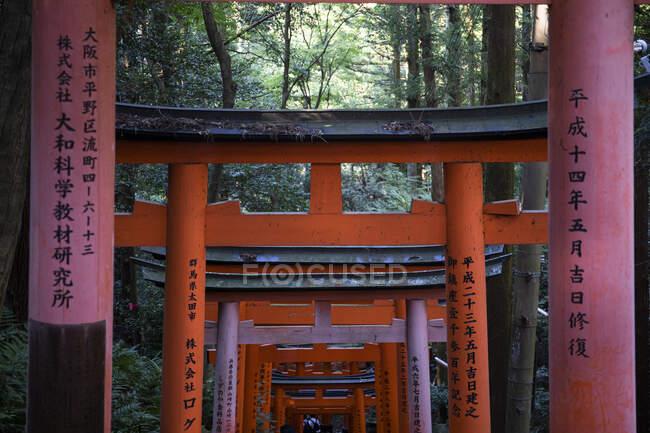 Japan, Kyoto Prefecture, Kyoto City,Kanjiontoriigates leading toFushimiInari-taishatemple — Stock Photo
