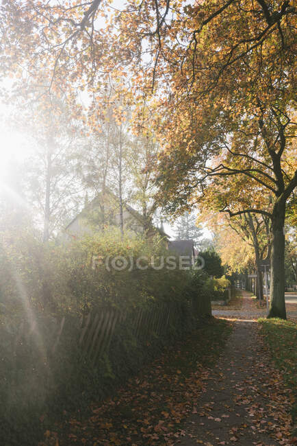 Residential area in autumn, Berlin, Germany — Stock Photo