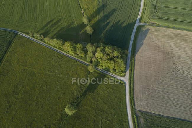 Germania, Baviera, Veduta aerea delle strade di campagna che tagliano i verdi campi di campagna in primavera — Foto stock