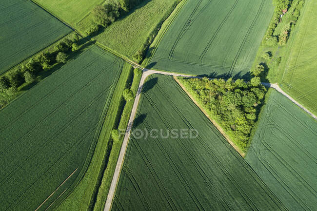 Germany, Bavaria, Aerial view of country roads cutting through green countryside fields in spring — Stock Photo