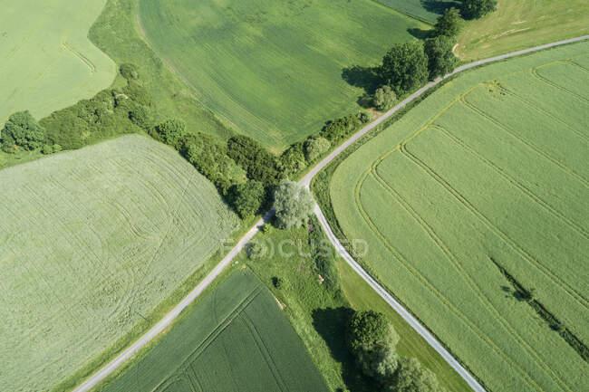 Germania, Baviera, Veduta aerea del verde campo di campagna e bivio di strada vuota — Foto stock
