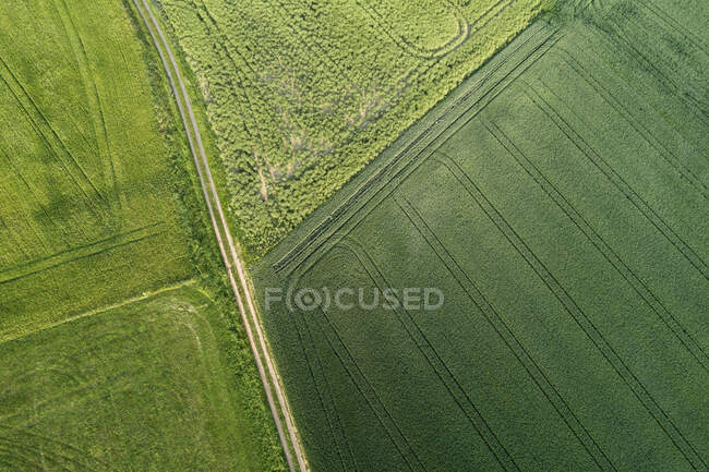 Germany, Bavaria, Aerial view of dirt road stretching between green countryside fields — Stock Photo