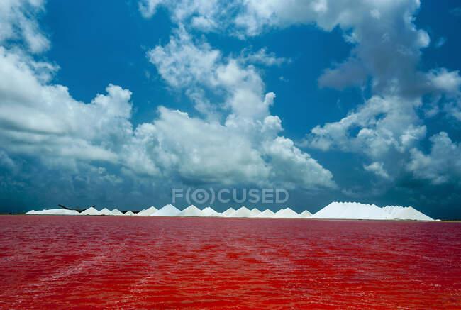 Vista del lago salato rosso contro il cielo blu nuvoloso, Bonaire, Caraibi Paesi Bassi — Foto stock