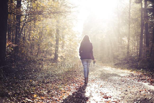 Vista posterior de la joven mujer caminando en el bosque en otoño - foto de stock