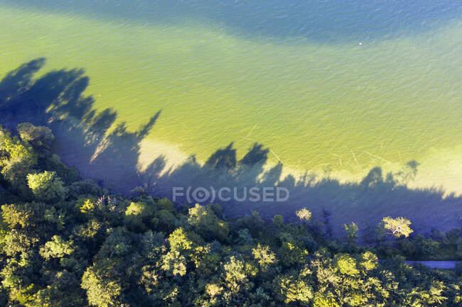 Alemanha, Baviera, Bernried am Starnberger Veja, Vista aérea da borda da floresta e costa verde do Lago Starnberg — Fotografia de Stock