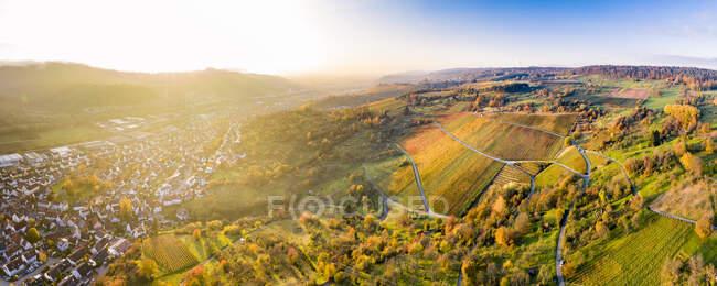 Alemania, Baden-Wurttemberg, Remstal, Vista aérea de los viñedos frente a la ciudad rural al atardecer de otoño - foto de stock