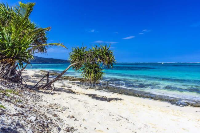 Vanuatu, Isla Misteriosa, Playa, Pacífico Sur - foto de stock
