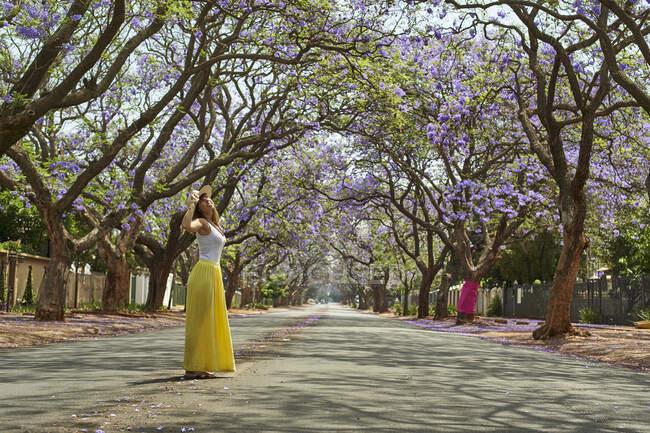 Mujer con sombrero, de pie en medio de una calle llena de jacarandas en flor, Pretoria, Sudáfrica - foto de stock
