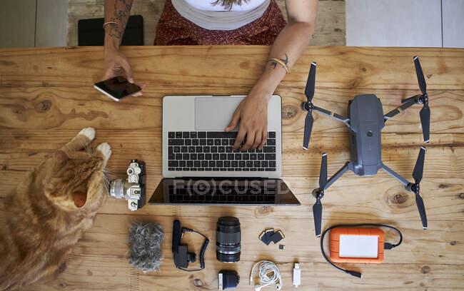 Pessoa sentada à mesa com equipamento fotográfico e gato de gengibre, usando laptop, vista aérea — Fotografia de Stock