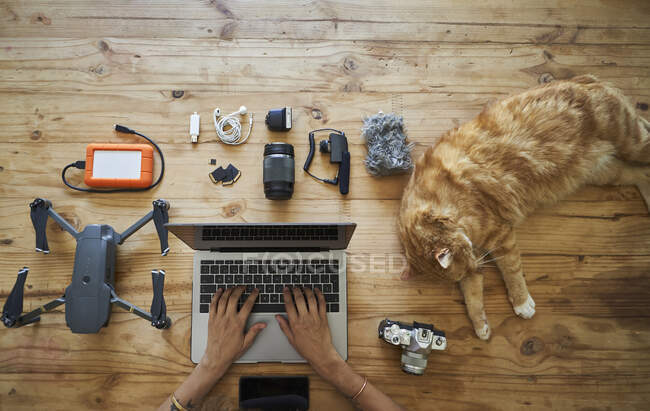 Person sitting at table with photografic equipment and ginger cat, using laptop, overhead view — Stock Photo