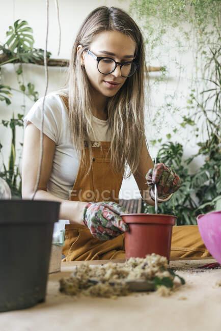 Jovem mulher trabalhando à mesa em uma pequena loja de jardinagem — Fotografia de Stock