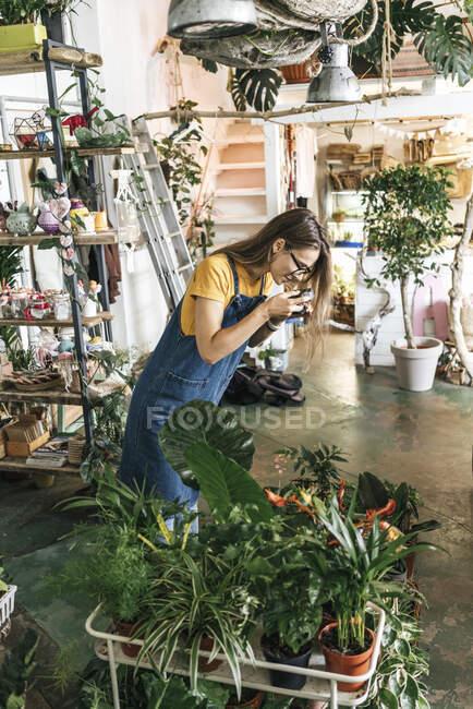 Молода жінка фотографує рослини в маленькому садівничому магазині. — стокове фото