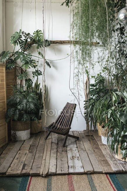 Wooden chair and plants in winter garden — Stock Photo