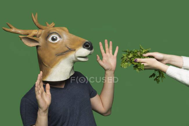 Joven con máscara de ciervo levantando las manos frente al fondo verde - foto de stock