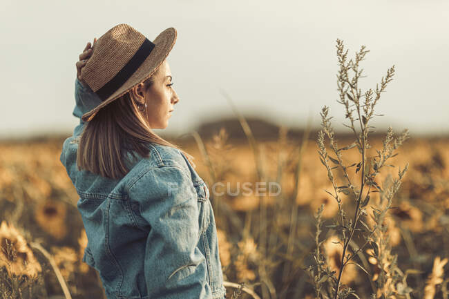Giovane donna con cappello e giacca jeans in un campo di girasoli alla luce della sera — Foto stock