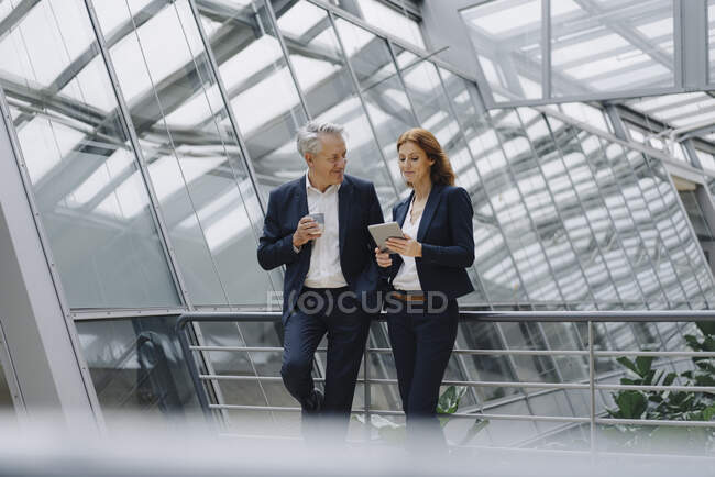 Усміхнений бізнесмен і бізнесмен, які розмовляють у сучасному офісному будинку. — стокове фото