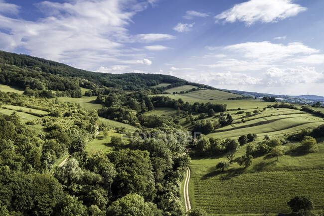 Austria, Lower Austria, Aerial view of green forested hills and vineyards — Stock Photo