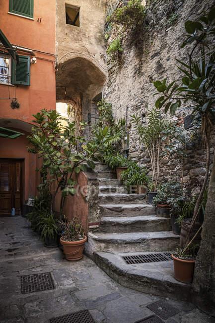 Laminação em Vernazza, Liguria, Italia — Fotografia de Stock