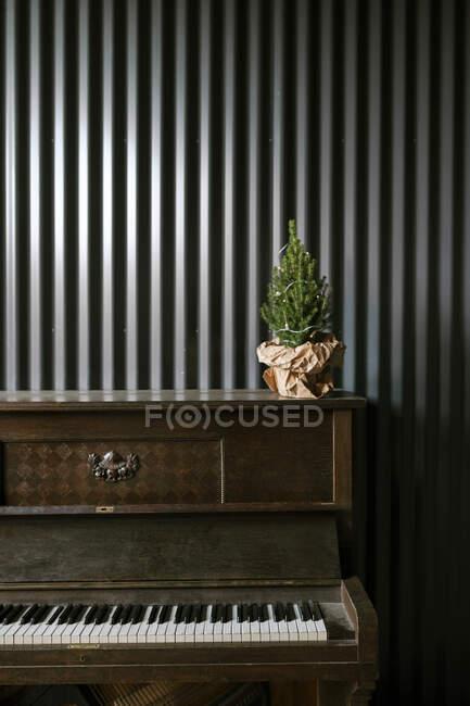 Christmas tree on the piano — Stock Photo
