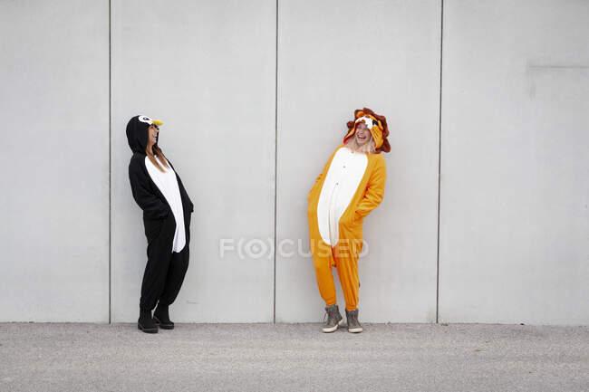 Dos mujeres en traje de pingüino y león en frente de la pared de hormigón - foto de stock