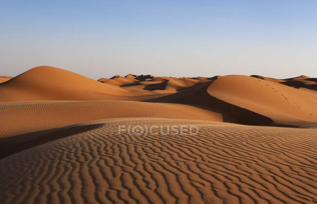 Sultanate Of Oman, Wahiba Sands, dunes in the desert — Stock Photo