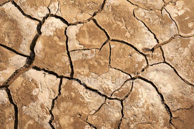 Terrain sec fissuré, Province de Namib, Angola. — Photo de stock