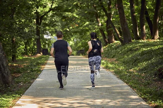 Вид сзади на спортивную пару, бегущую по лесной тропинке — стоковое фото