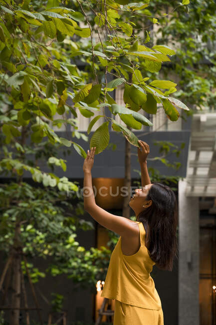 Smiling woman dressed in yellow touching leaves of a tree in the city — Stock Photo