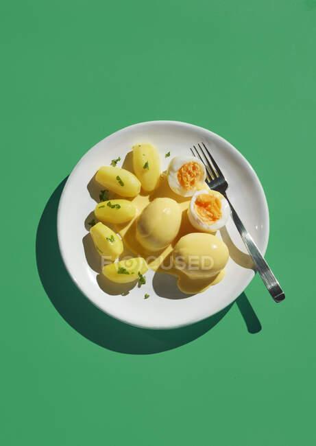 Diretamente acima do tiro da refeição sã na chapa com garfo no fundo verde — Fotografia de Stock