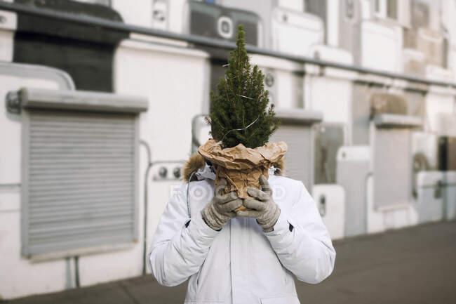 Молодий чоловік ховає голову за ялинкою на вулиці. — стокове фото