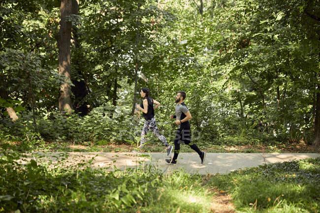 Спортивная пара бегает по лесной тропинке — стоковое фото