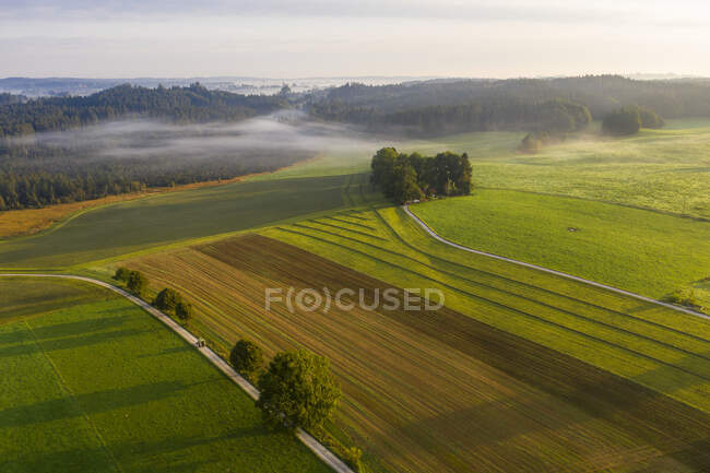 Germany, Bavaria, Dietramszell, Aerial view of countryside fields at foggy dawn — Stock Photo