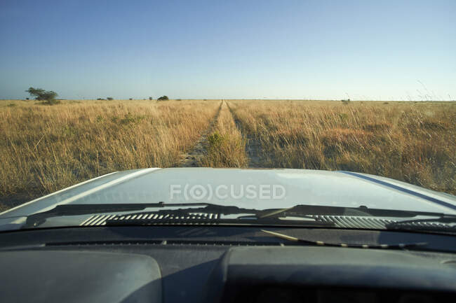 Автомобіль, що їде через саванний пейзаж, Макгадікгаді Панс, Ботсвана. — стокове фото