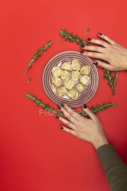 Main avec plaque de Pelmeni — Photo de stock